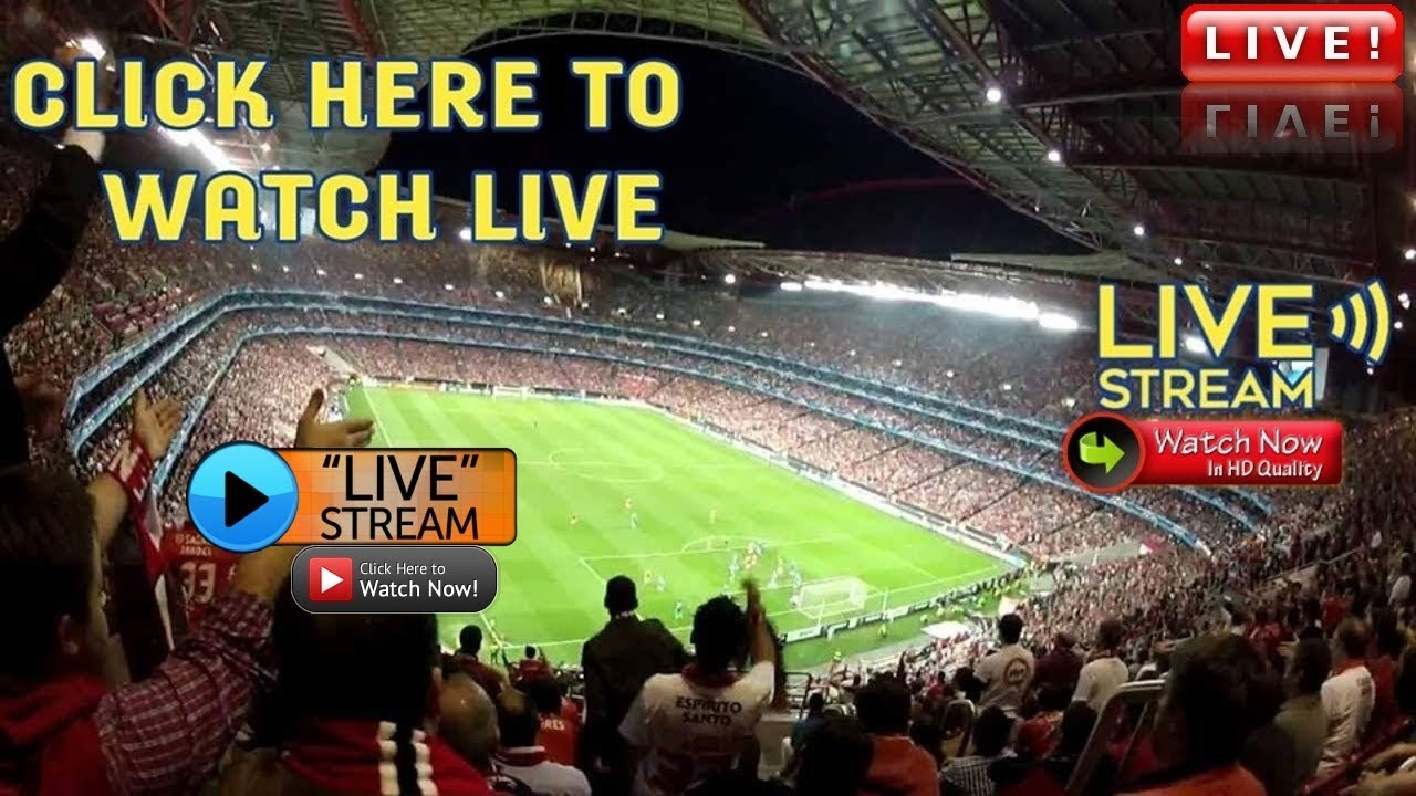 Image result for Italy vs Greece live