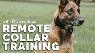 Michael Ellis Class On Remote Collar Training