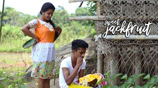 Riped jackfruit gives a divine taste with many recipes  village foods