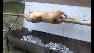 Repeat youtube video Prase na ražnju-SER Zile.wmv