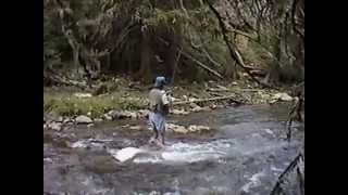 North fork Tongue river Big Horn Mountains fly fishing