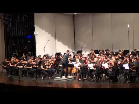 Adlai E Stevenson High School Orchestra Dragostea Din Tei 2014