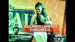 YERBA FRESCA - BAILANDO LAMBADA 2019 (VIDEO NO OFICIAL)