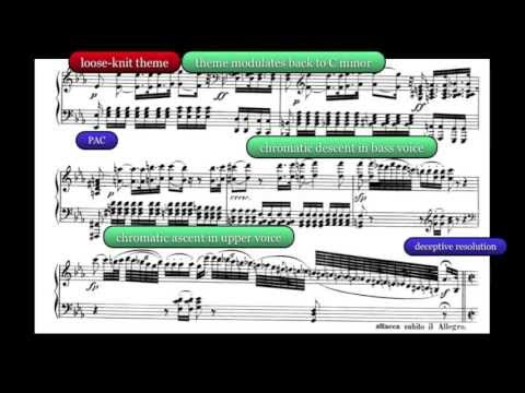 beethoven sonata op 13 no 8 analysis