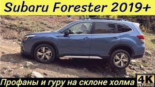 Бездорожье на новом Subaru Forester - уже не может!?