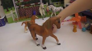 лошади Schleich  распаковка и фигурки диких животных ИГРУШКИ for Kids видео для детей