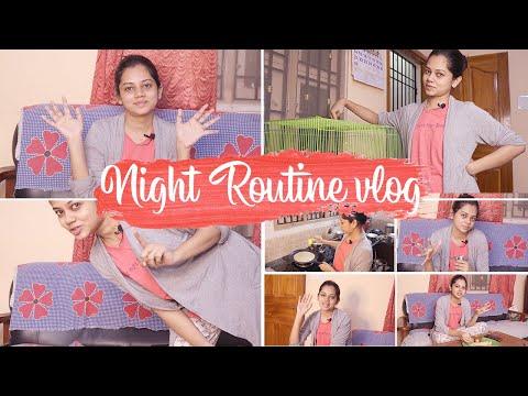 My Random Night Vlog | Finches Bird | Skincare | Anithasampath Vlogs