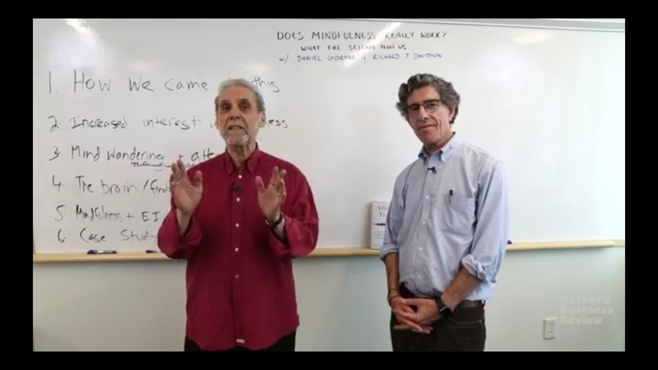 Does Mindfulness Actually Work In >> Does Mindfulness Really Work With Daniel Goleman And Richard Davidson