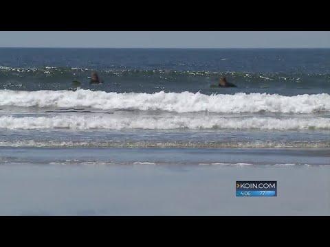 Multiple shark sightings in Cannon Beach area