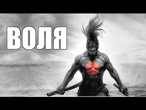 ТИХОМИРОВ СДАЛ АНАЛИЗЫ (6.5 ЛЕТ НА КУРСЕ) - YouTube