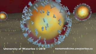 Nanotechnology for Targeted Cancer Therapy