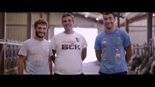 Viandes Du Sud Toulousain -  Présentation race Gasconne
