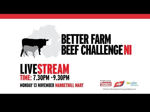 Better Farm Beef Challenge NI, Markethill Mart Co. Armagh
