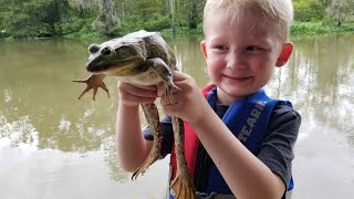 Frog Hunting Catch Clean & Cook! - Frog hunt of a lifetime!