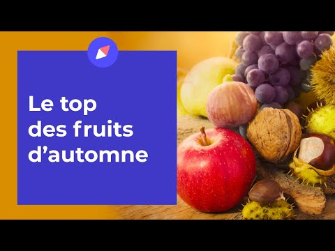 le-top-des-fruits-de-l'automne---coaching-nutrition