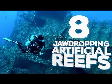 8 Jaw-Dropping Artificial Reefs