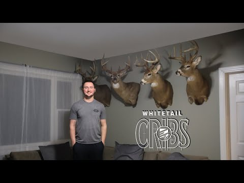 Whitetail Cribs: IL Pope And Young Bucks & 100 Yard Archery Range