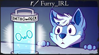r/FurryIRL - HERE COMES 2021