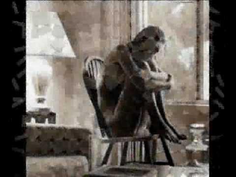 L' Amore e Basta -  Giusy Ferreri VS Tiziano Ferro