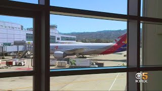 Asiana Airlines Flights Halted Following Korea High Court Ruling