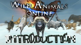 Wild Animals Online Game Introduction