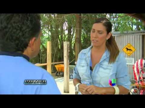 Univision Impacto.....Horse slaugher Story
