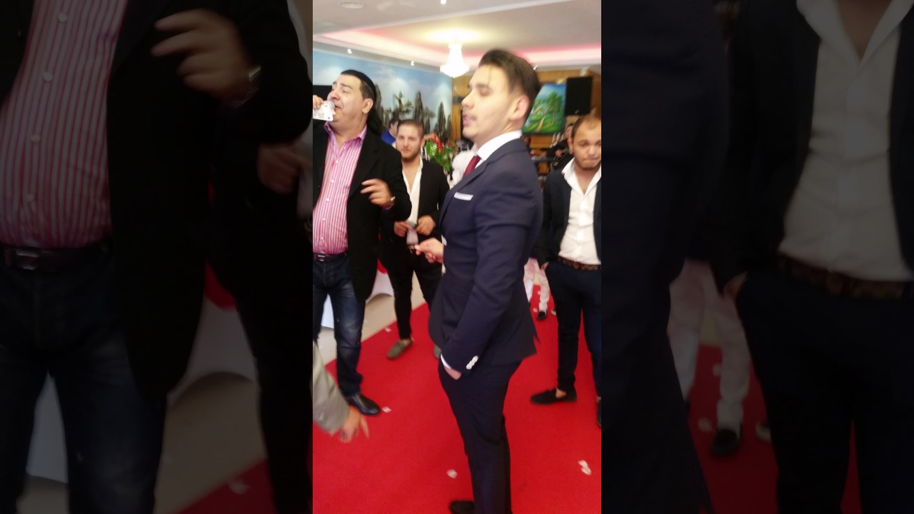 denis hamidovic download mp4