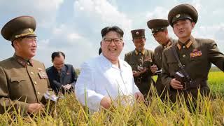 Liệu Triều Tiên có thể học theo mô hình VN không? (399)