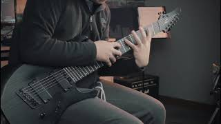 Animals As Leaders - The Woven Web - Guitar Cover