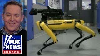 Gutfeld on robot dog