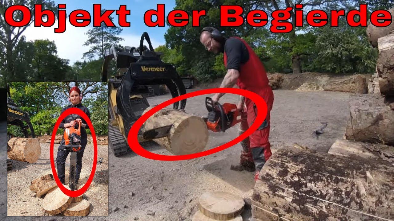 Das Objekt der Begierde | Baumpflege Mertens