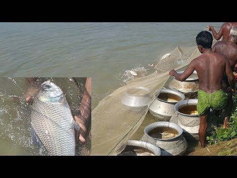 Fishing & Cooking | Catching Catla & Carp Fish | Charity Foo