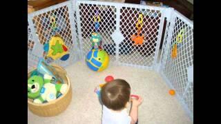 Baby Gates.wmv