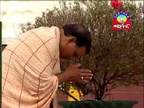 Hatare Re Mo Mutha Mutha Saradha Bail