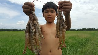Freshwater Prawn Trap - Shrimp Trap Fishing