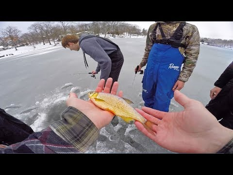 MYSTERY Fish Landed Through Ice? We Have No Clue