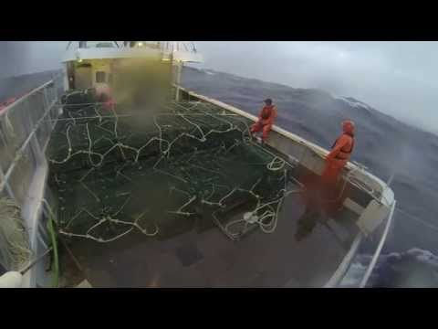Setting back a trawl of lobster pots offshore. March 30th 2014