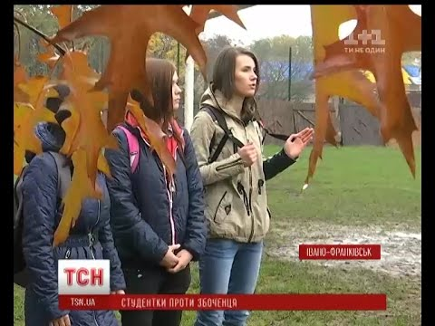 Івано-Франківська маршрутка номер 11
