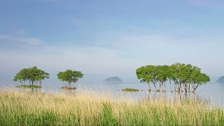 4k ultra hd 琵琶湖の湖畔風景 landscape of lake biwa ko shot on red epic