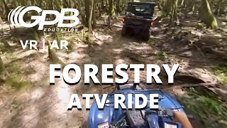 ATV Ride Through the Forest | Forestry VR 360