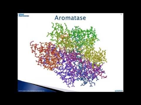 Estrogen Dominance, Aromatase Inhibition and Preservation of Testosterone
