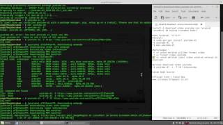 Tips & Tricks Download Video Youtube Via Terminal LinuxMint 18 Serena Cinnamon 64bit