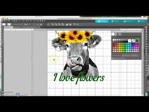Create your own images in Sil to print on waterslide paper