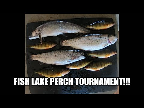 Fish Lake Perch Tournament 2020