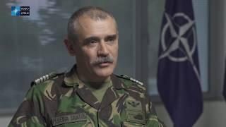 NATO Lessons Learned Portal