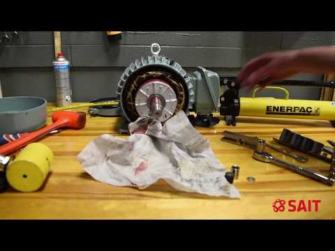Electric motor bearing replacement