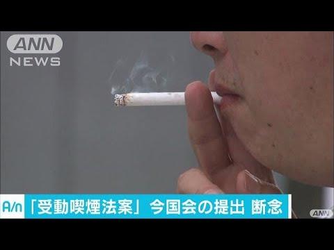 受動喫煙の防止法案 今の国会への提出は見送り(17/06/15) - YouTube