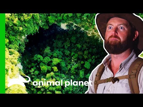 Will Forrest Find An Asian Unicorn In The World's Largest Cave? | Extinct Or Alive?