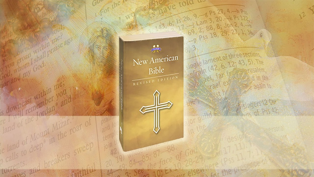 American catholic online