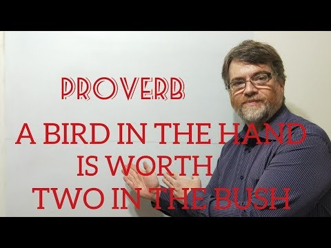 Tutor Nick P Proverbs (25) A Bird In Hand Is Worth Two In The Bush